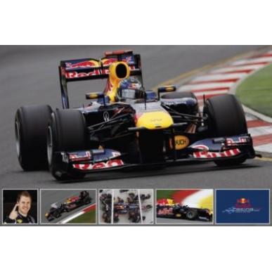 Постер Red Bull Vettel Collage